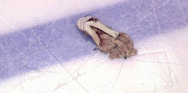 Preds-Catfish-on-Ice
